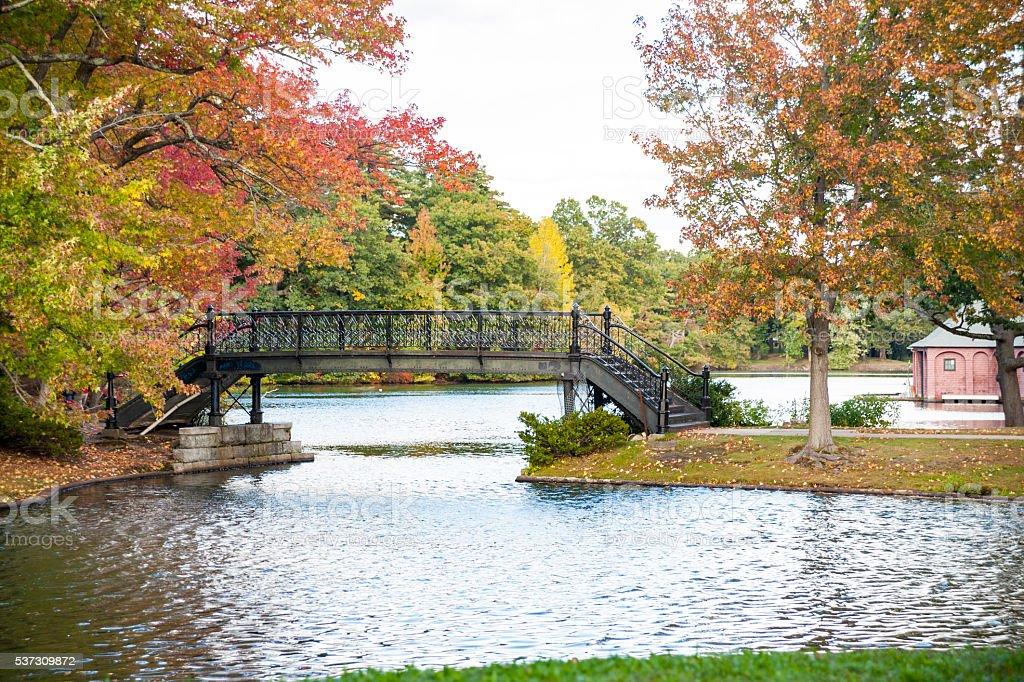 Iron bridge in park stock photo