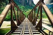 Iron Bridge Passing over a River in the Jungle