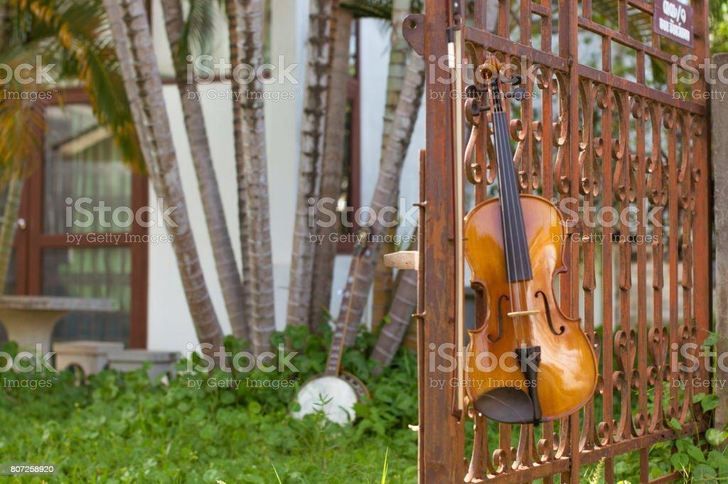 Iron doors, rust, lawn, trees stock photo