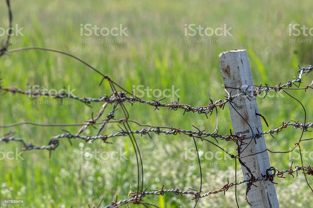iron fence around farmland stock photo