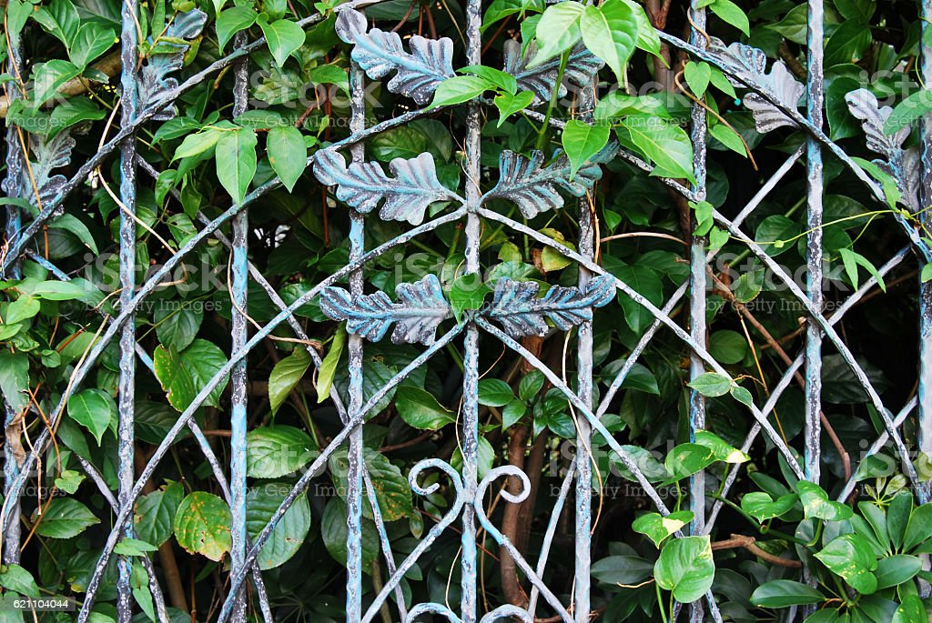 Iron fence with trees stock photo