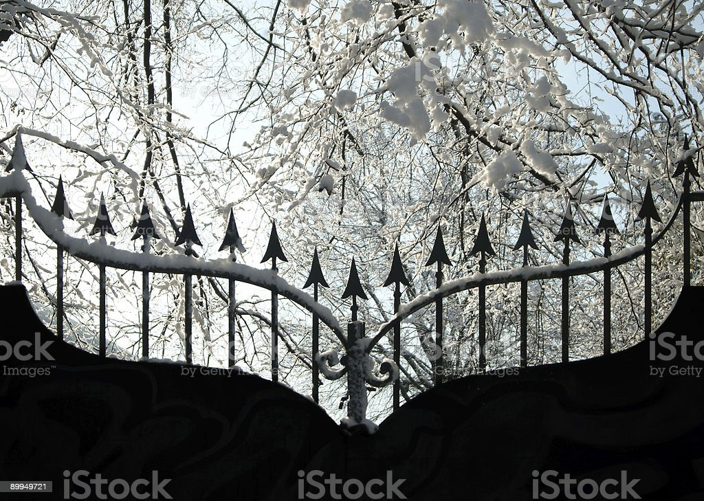 Iron gate in winter royalty-free stock photo