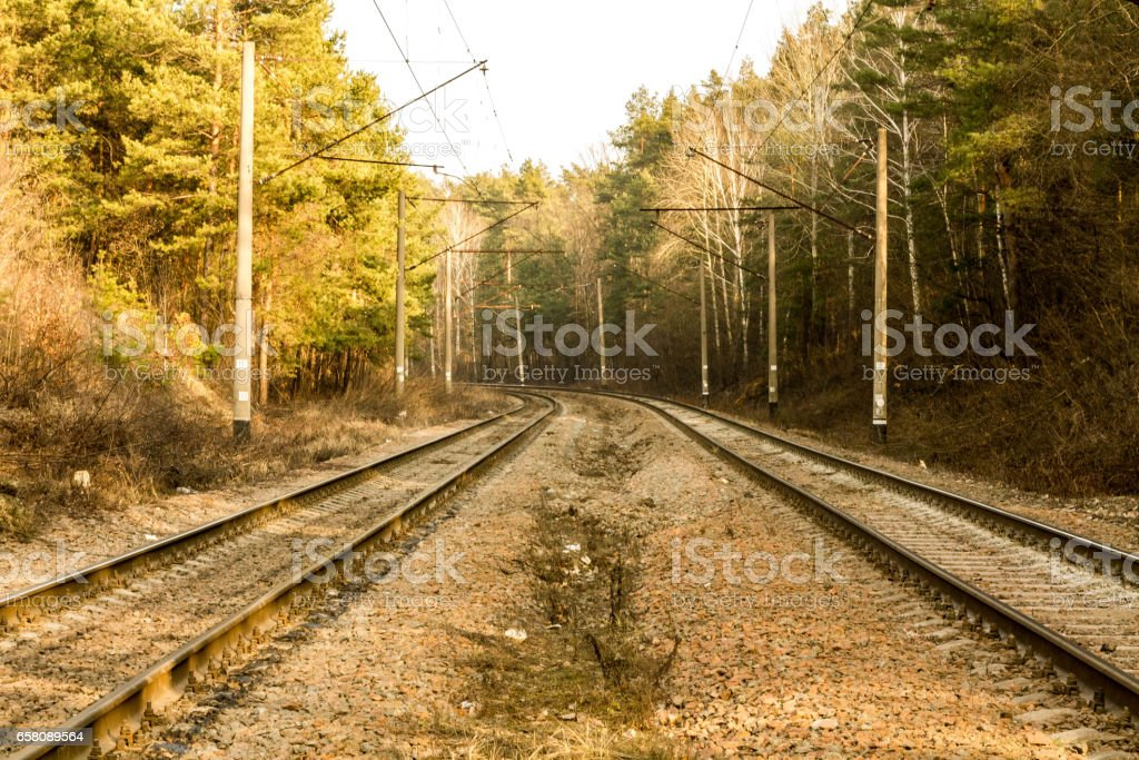 Iron path in the woods. Sunny day. The railway. stock photo