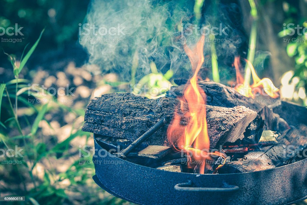 Iron plate with wood logs and fire stock photo