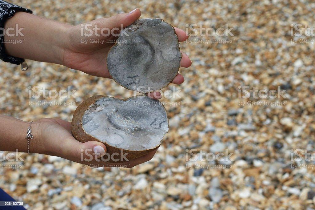 Ironstone nodule split in two Hengistbury Dorset England stock photo