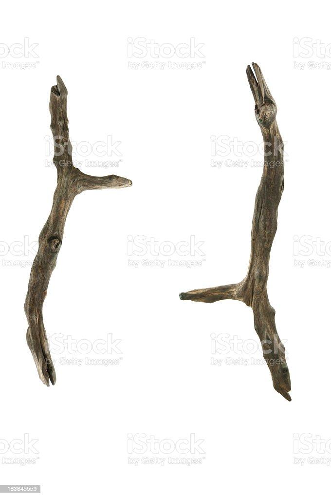 Ironwood Branches on White royalty-free stock photo