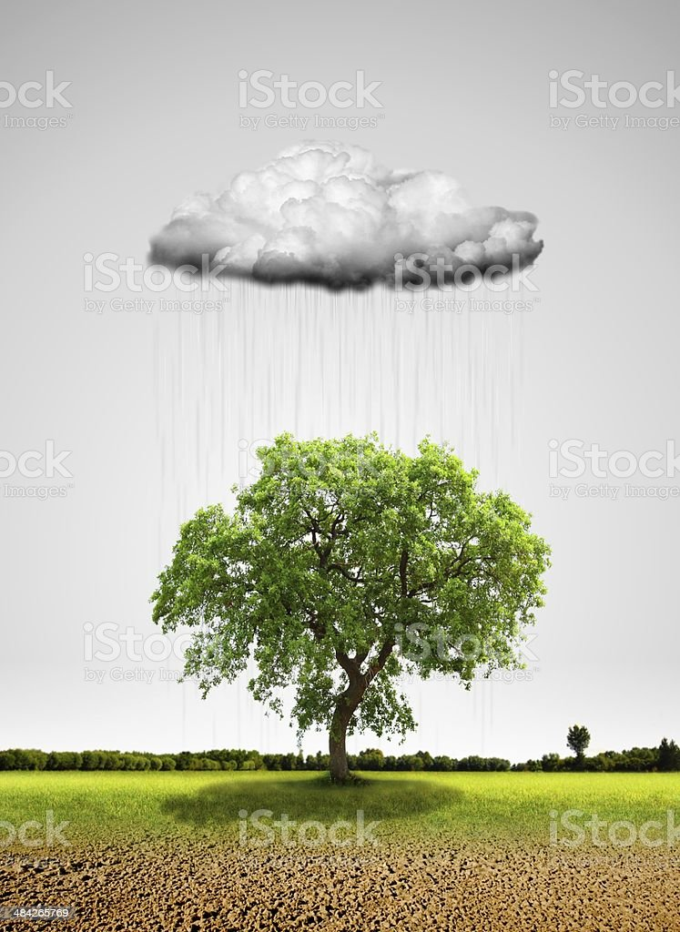 Irr?gation with Rain Cloud stock photo