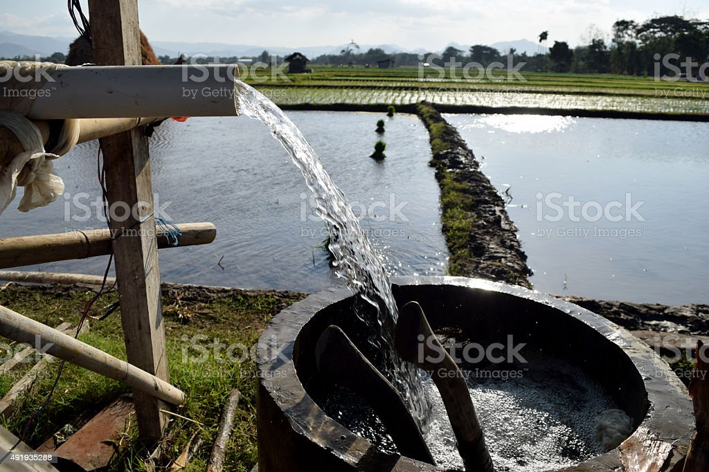 Irrigating rice in Indonesia stock photo