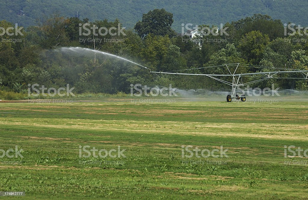 Irrigation Action royalty-free stock photo