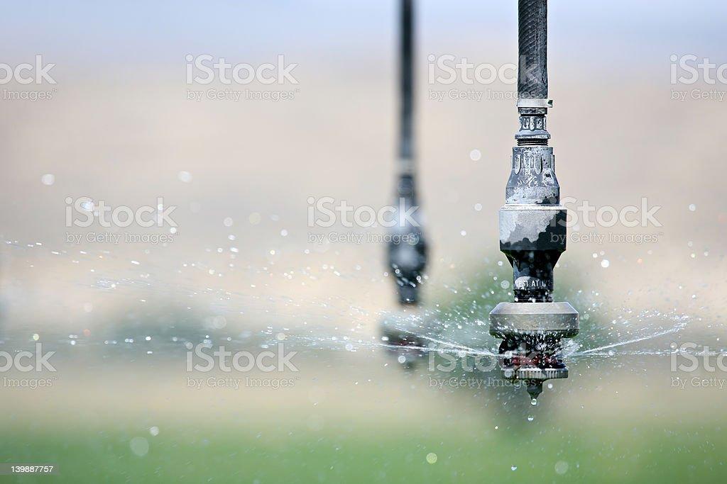 irrigation close up royalty-free stock photo