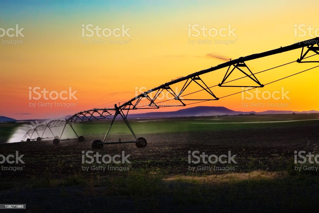 Irrigation equipment spraying water in the sunset stock photo