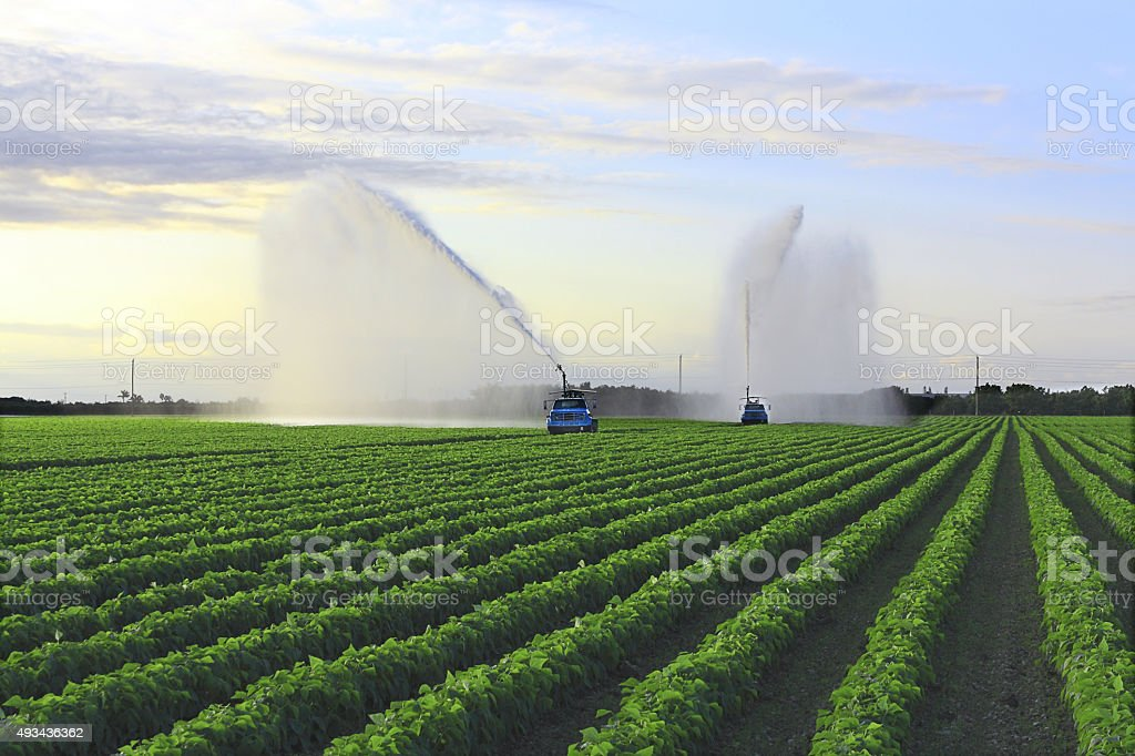 Irrigation Farm Land-1 stock photo