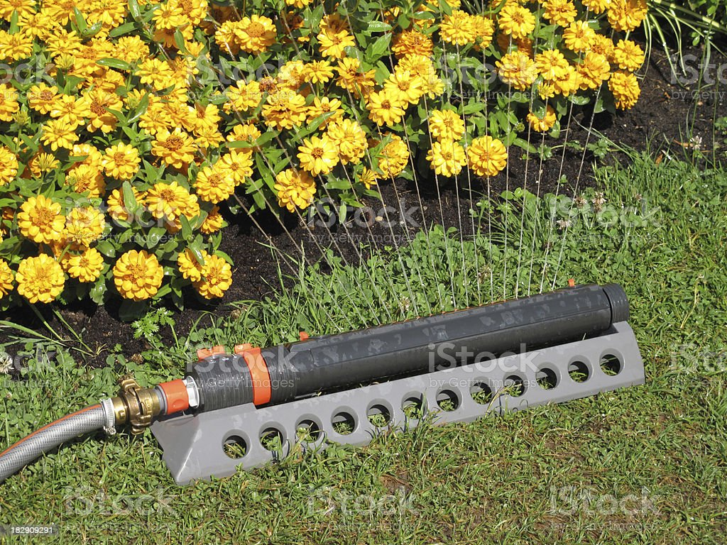 Irrigation for flowers and lawns stock photo