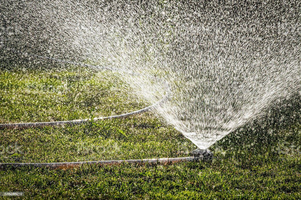 Irrigation of lawns stock photo