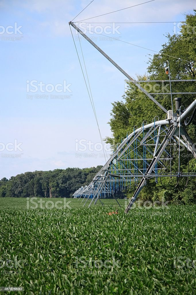Irrigation system stock photo