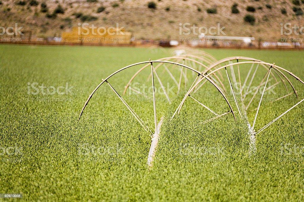 Sistema di irrigazione foto stock royalty-free