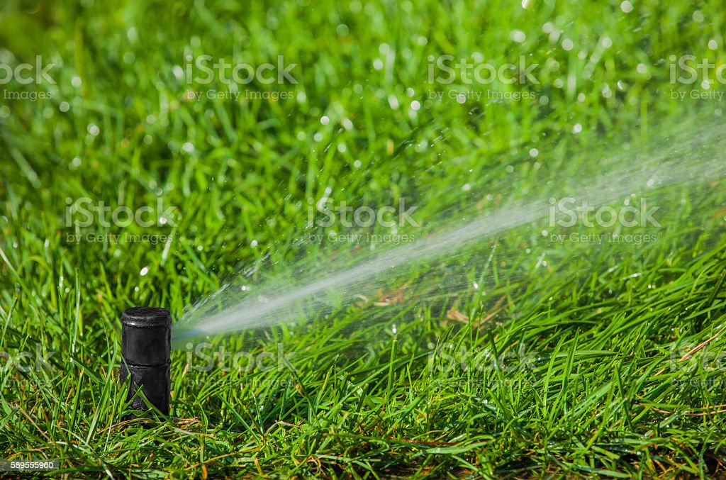 Irrigation system watering the lawn in the park stock photo