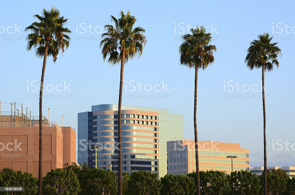 Irvine highrise buildings and palm trees stock photo