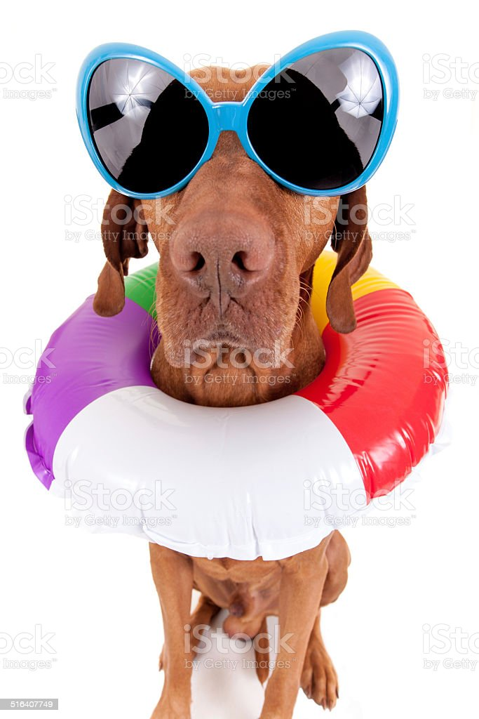 Is it summer yet ? stock photo