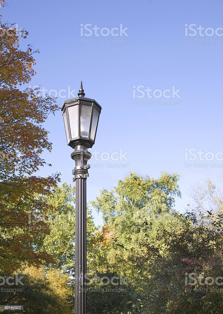 Is this Narnia? royalty-free stock photo