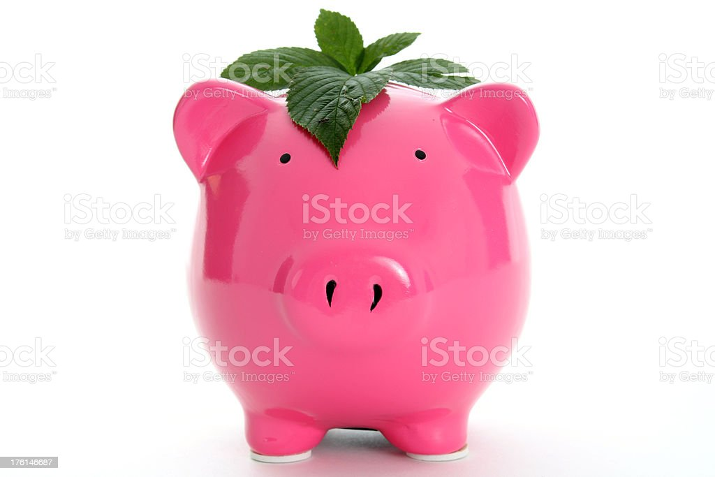 Is your money growing? stock photo