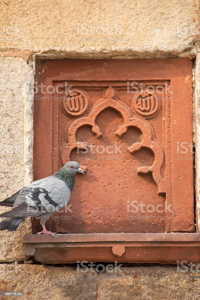 Isa Khan Niyazi tomb decoration with a sitting pigeon stock photo