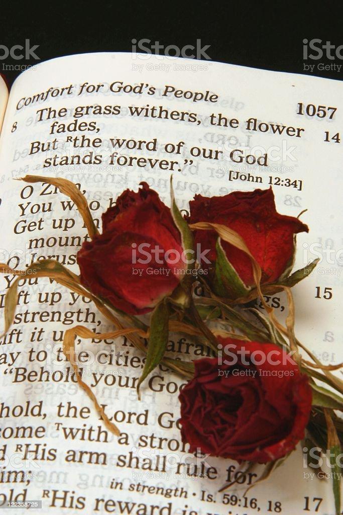 Isaiah 40:8 Bible Scripture stock photo