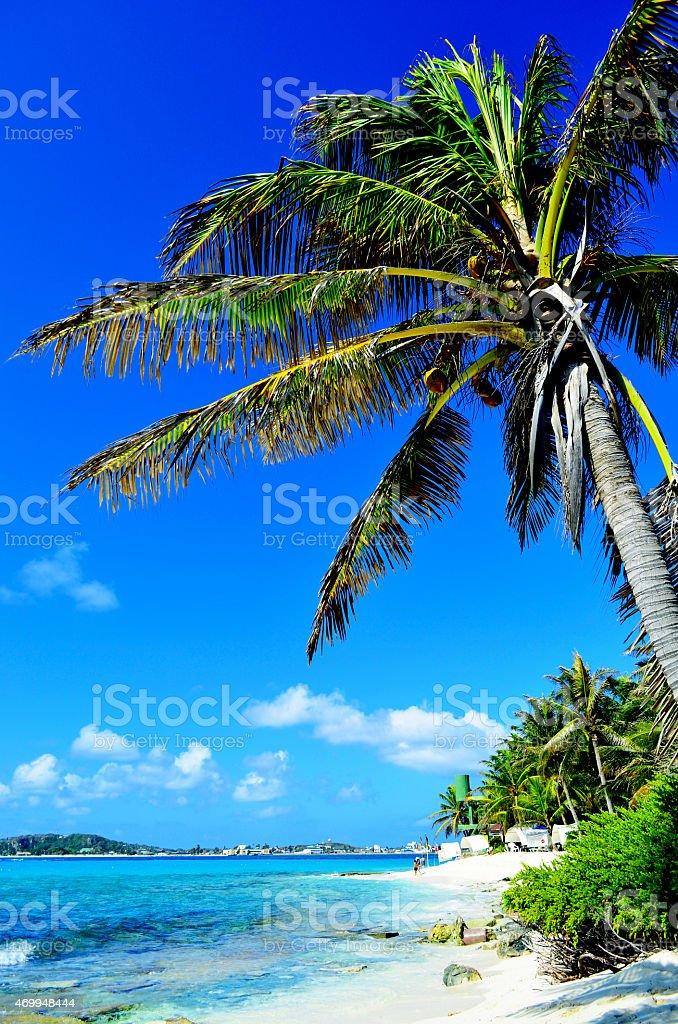 Isla de Johnny Cay / Colômbia stock photo