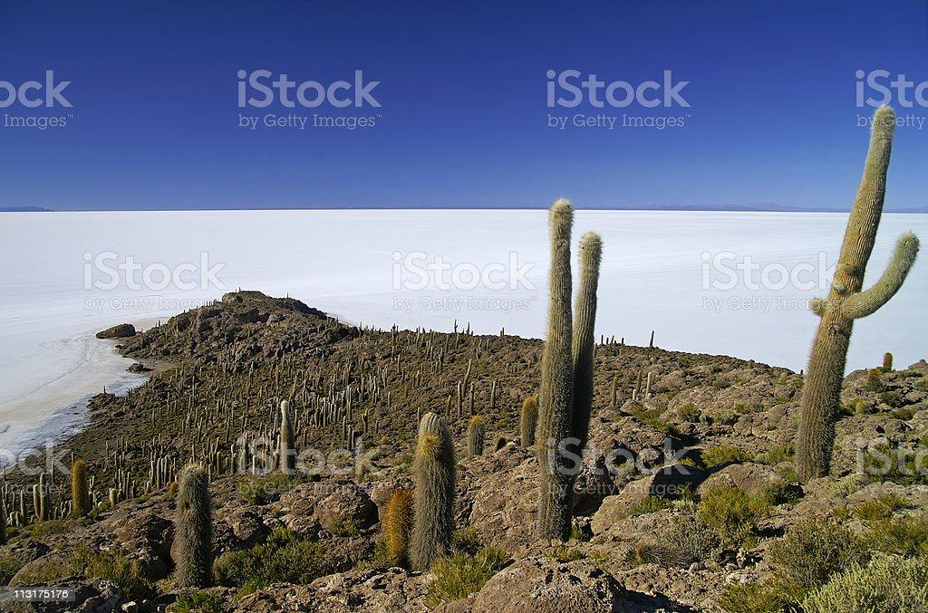 Isla De Pescadores stock photo