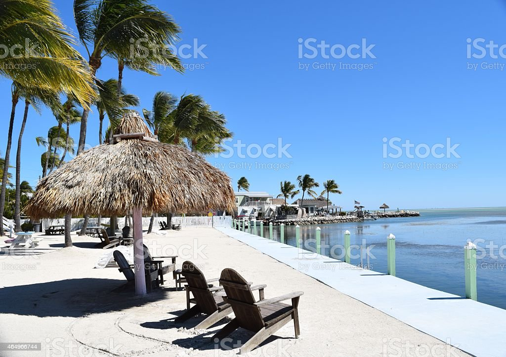 Island beach resort with palm trees and sun chairs and ocean stock photo