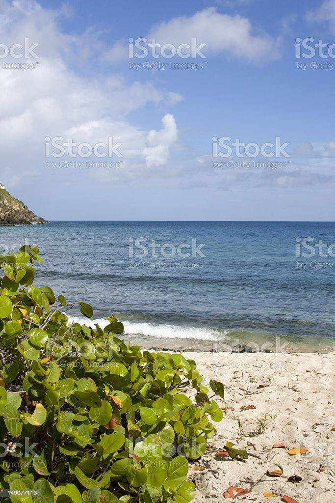 island beach view stock photo
