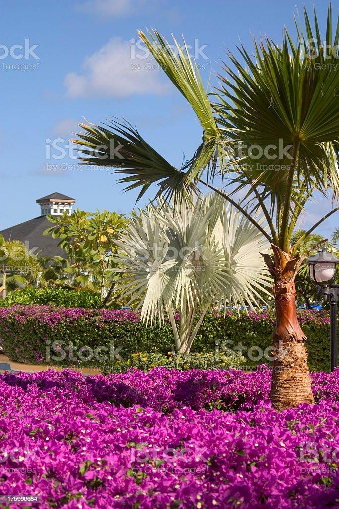 Island Gardens royalty-free stock photo