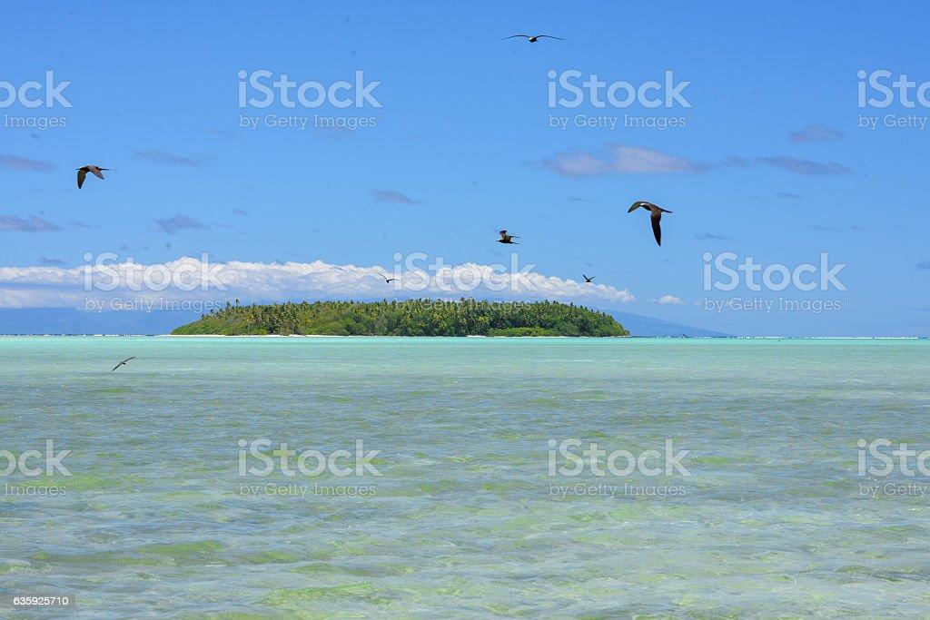 Island in Bora Bora, French Polynesia stock photo