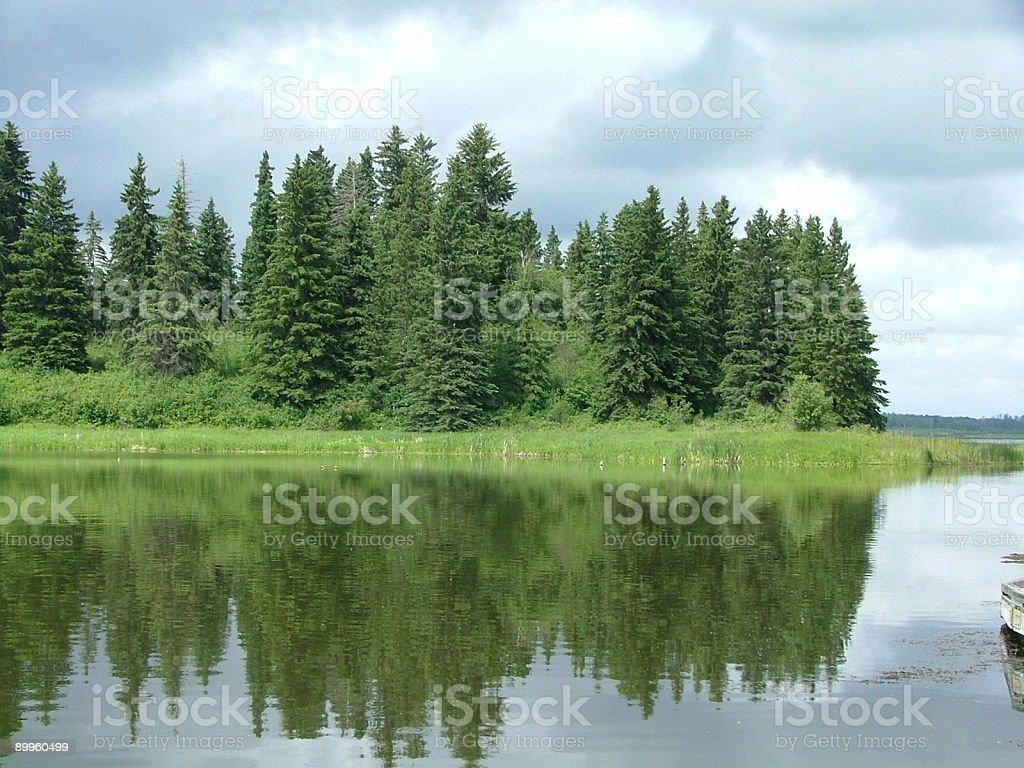 Island In Pristine Prairie Lake-  Elk Island Park,Alberta royalty-free stock photo