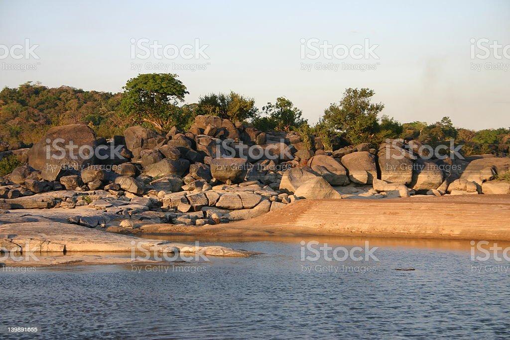 Insel in den Amazonas. Orinoco Fluss. Lizenzfreies stock-foto