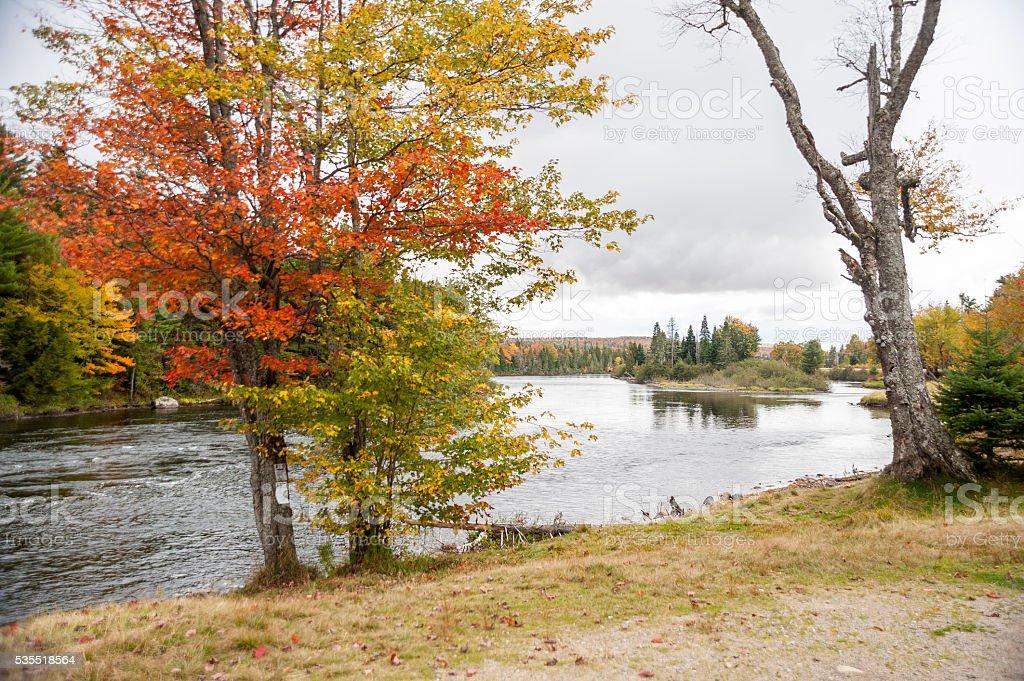 Island in the Androscoggin River stock photo