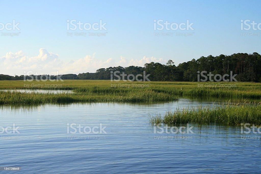 Island Marsh royalty-free stock photo