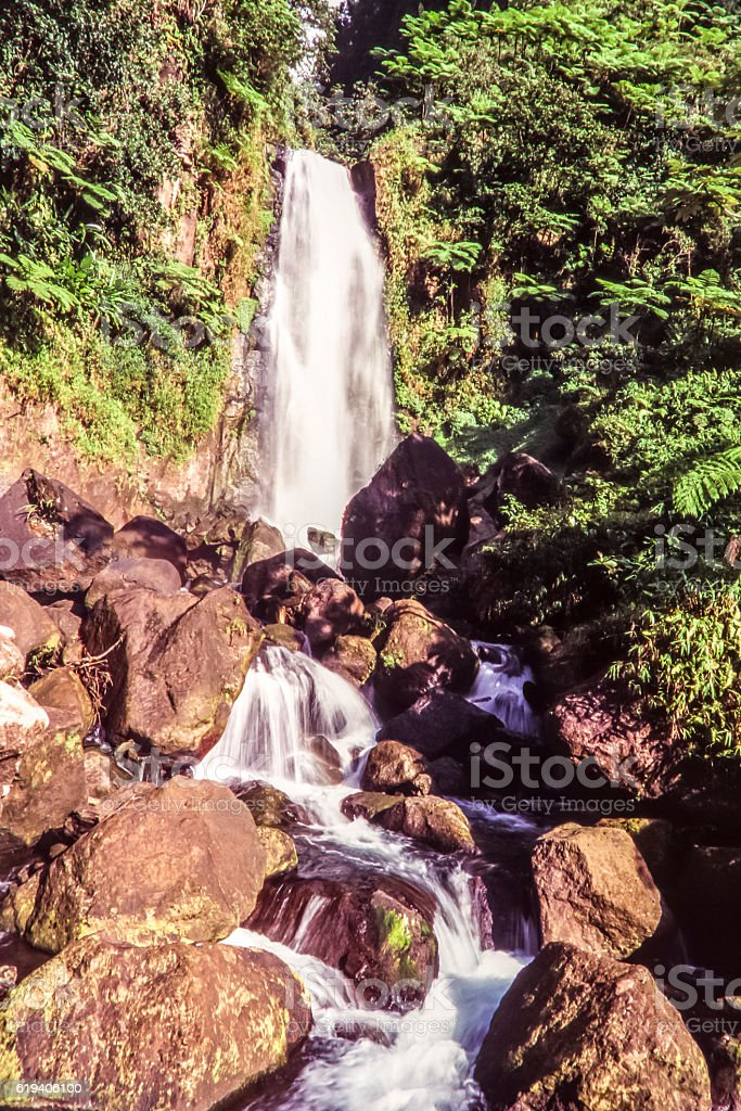 Island of Dominica stock photo