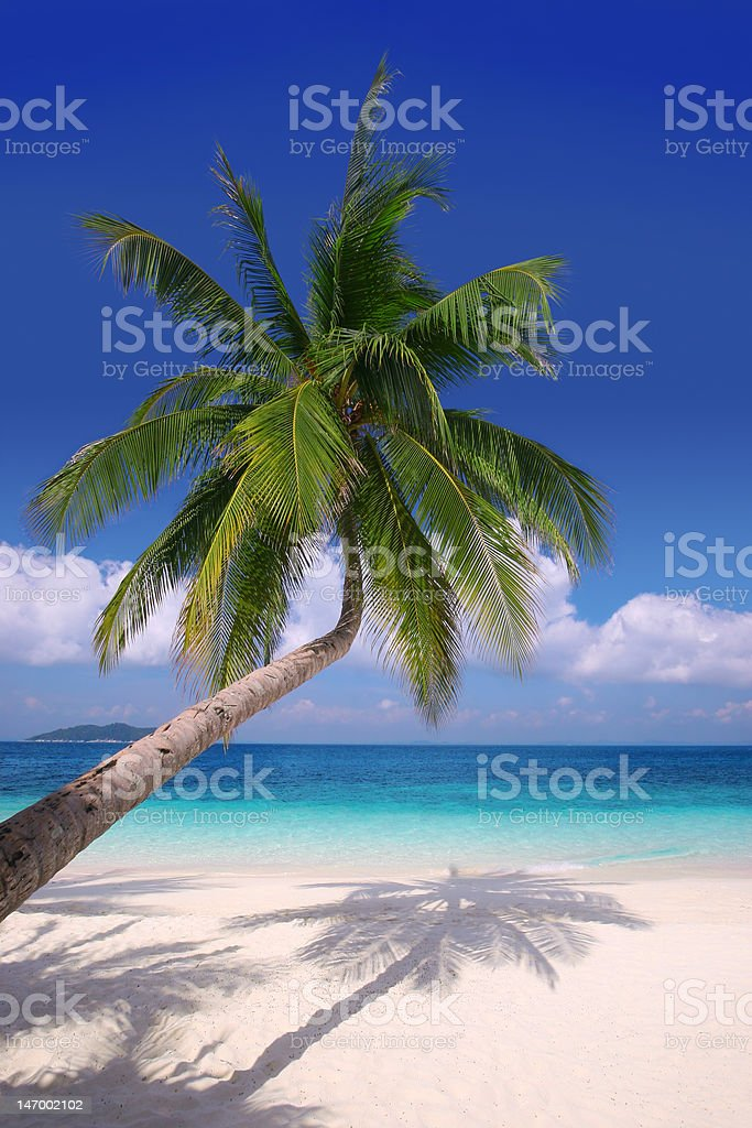 Island Paradise #2 royalty-free stock photo