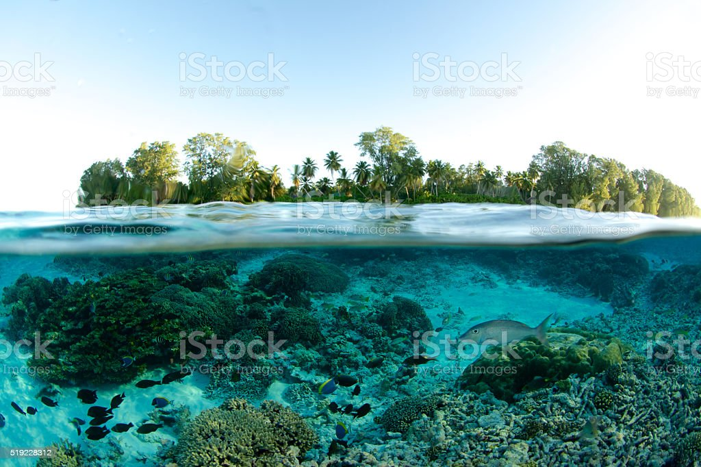 island split level stock photo