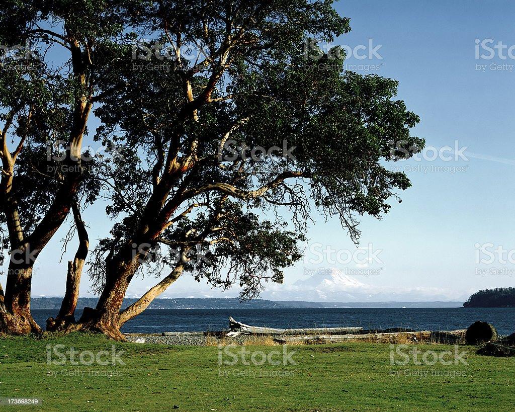 Island View on Puget Sound, Washington, United States royalty-free stock photo