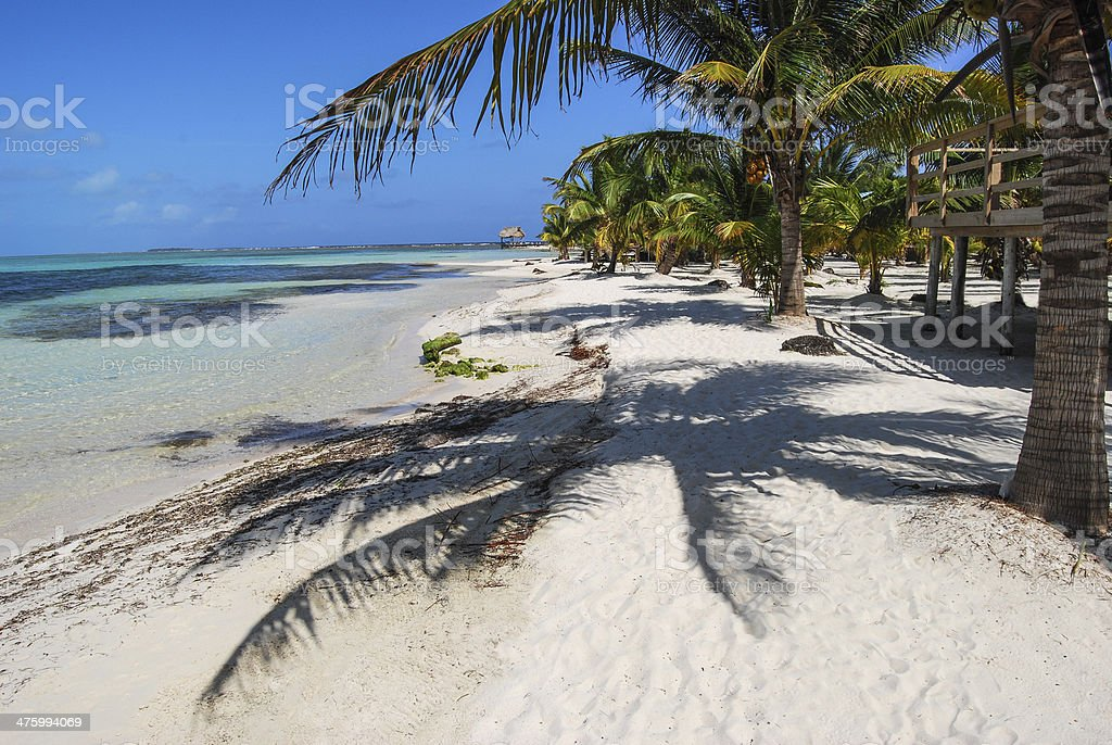 Island village and Palm Shadow stock photo