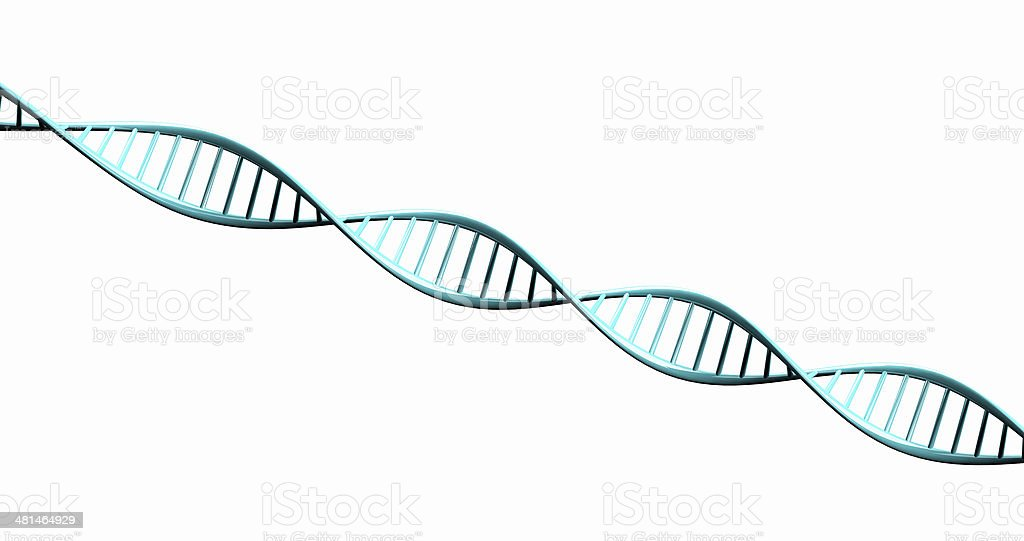 Isolated 3d render model of twisted DNA chain. stock photo