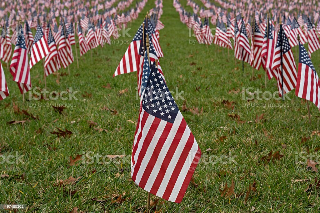 Isolated American Flag stock photo