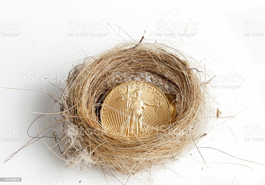 Isolated birds nest with gold coin stock photo