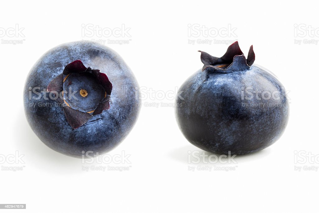 isolated Blueberries stock photo