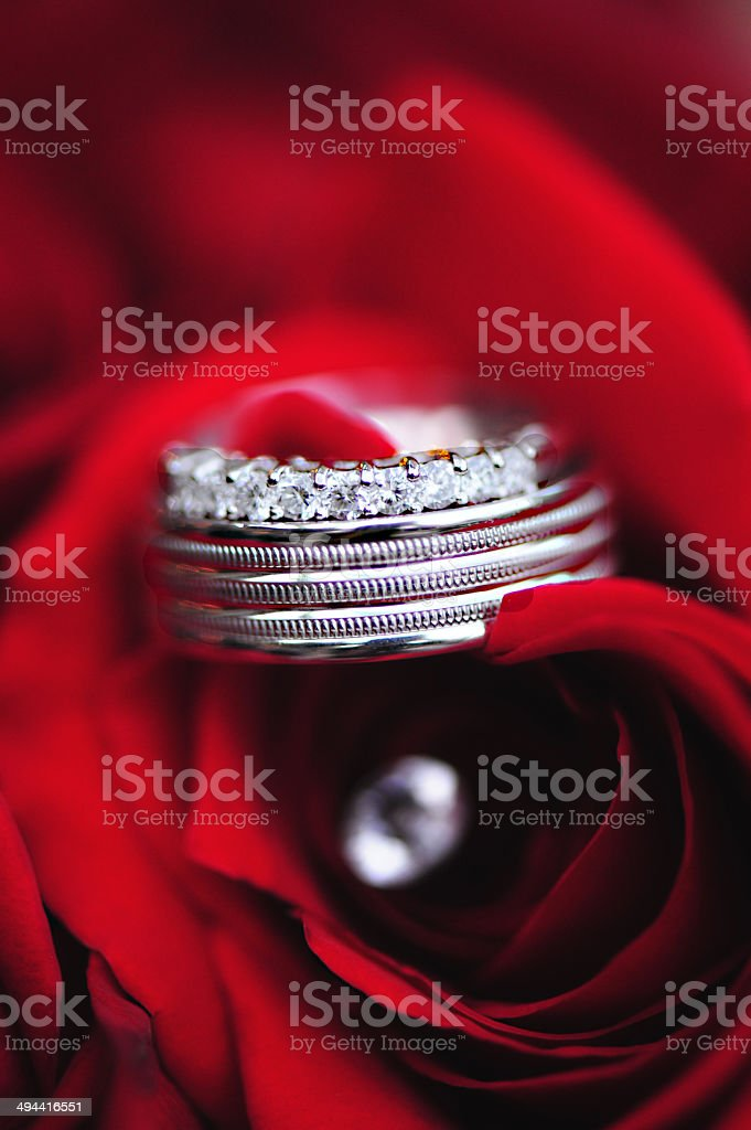 Isolated Bride & Groom Wedding Rings on Red Roses royalty-free stock photo