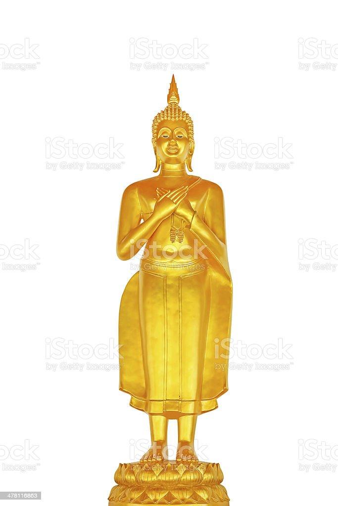 Isolierte buddha-statue Lizenzfreies stock-foto