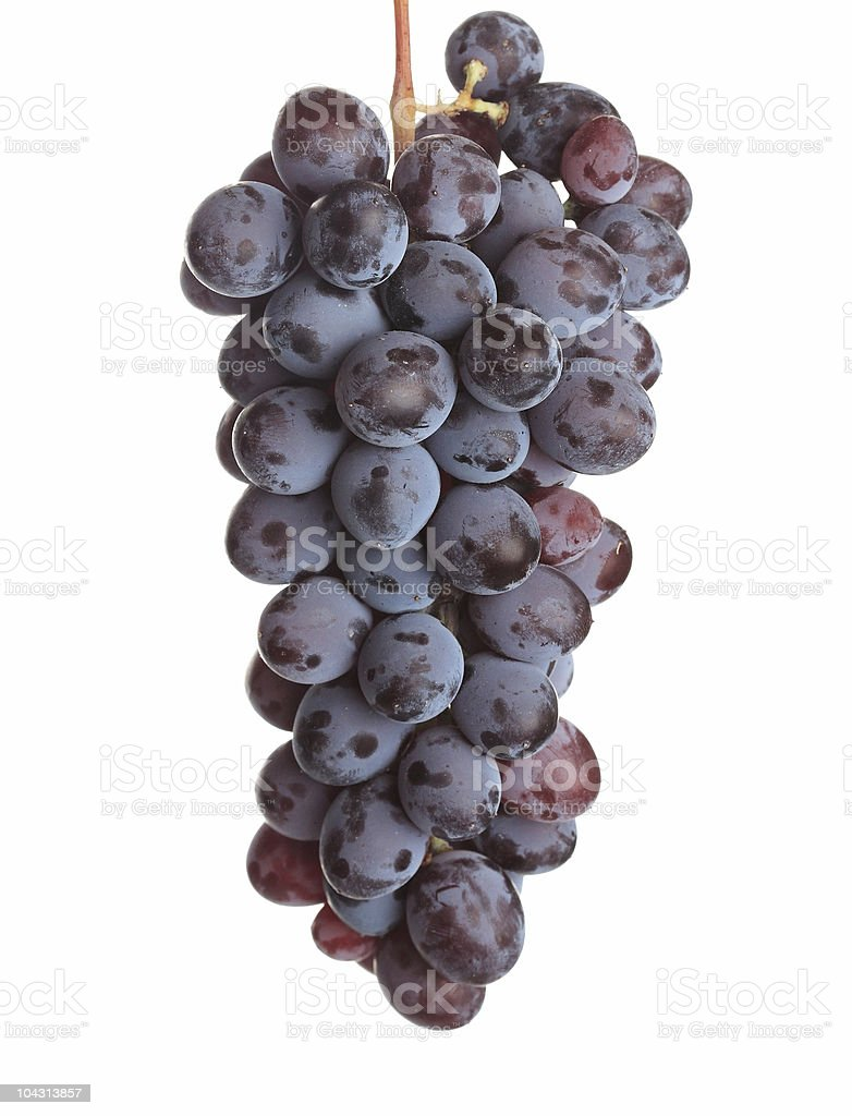 Isolated cluster of grape against white background royalty-free stock photo