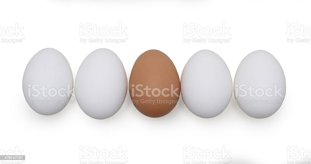 isolated eggs on white background stock photo